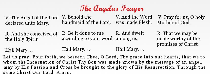 how to pray the angelus